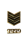 Senior Customs Officer - Rank Insignia