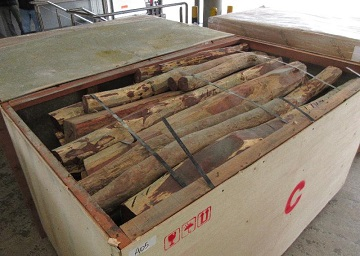 Hong Kong Customs seized about 26 160 kilograms of suspected Dalbergia species wood logs from two containers at the Kwai Chung Customhouse Cargo Examination Compound on February 5. The estimated market value of the seizure was about $3.6 million.